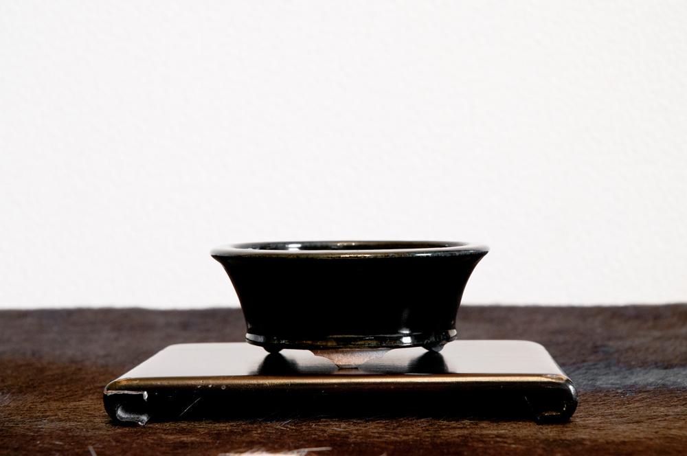 天竜石仙鉢